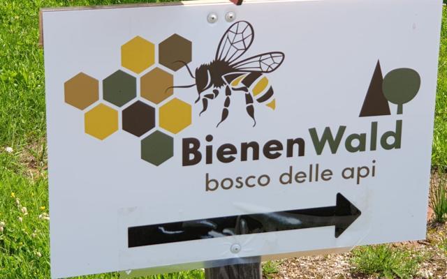 Bienenlehrpfad Steinegg - Gummer mit Lehrbienenstand