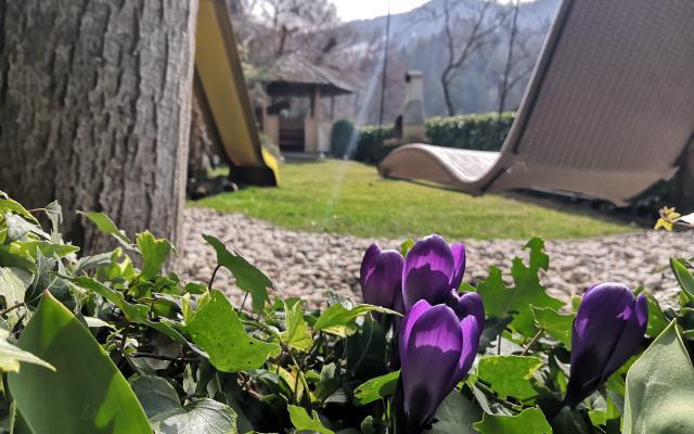 Schwebeliege Garten Frühling Sonnleiten Dolomiten Residence