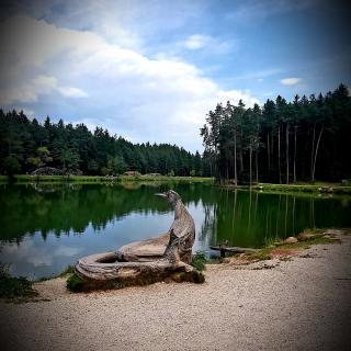 Holzskulpturen am Huberweiher Völs am Schlern