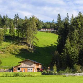 Gampermoos Lehrbienenstand am Bienenlehrpfad Steinegg - Gummer