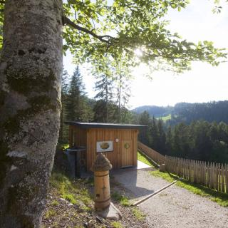 Lehrbienenstand am Bienenlehrpfad Steinegg - Gummer